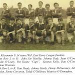 Kilcummin U14 Team 1965