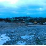 New Field 2011